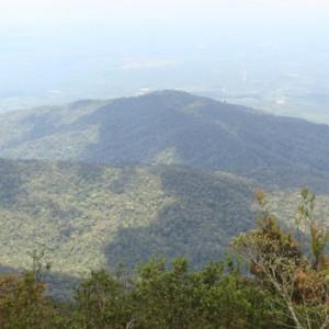 Gunung-Ledang-(Mount-Ophir)