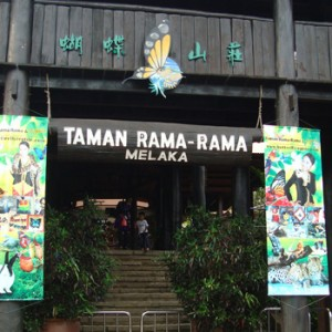 Melaka-Butterfly-and-Reptile-Sanctuary