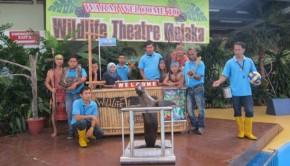 Wildlife-Theatre-Melaka